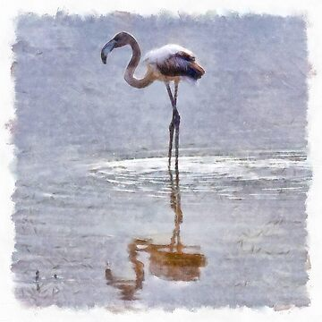 Flamingo Ripples and Reflections Watercolor by taiche