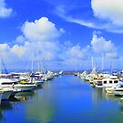 Port Stephens by oddoutlet