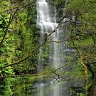 Erskine Falls by Ladyshark