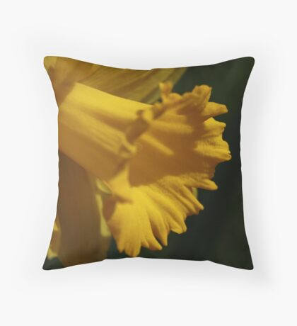 Confident Radiance Throw Pillow