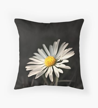 Shine On ~ the World is a Brighter Place for Your Inner Light ~ Shine On ~ Throw Pillow