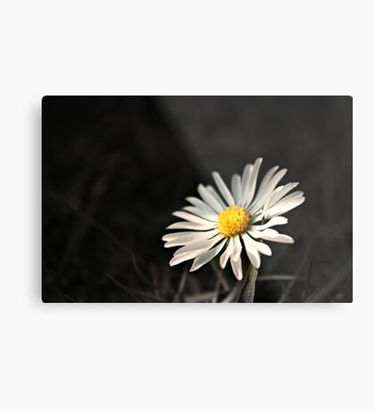 Shine On ~ the World is a Brighter Place for Your Inner Light ~ Shine On ~ Metal Print