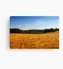 the grainfield Canvas Print