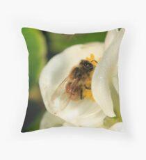 Bee on white Begonia Throw Pillow