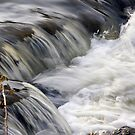 Small rapids, Long Tom River, Oregon by aussiedi