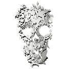 Simple Skull by Ali Gulec