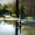 Inception Spinning Top by Monica Carvalho (mofart_photomontages)