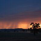 Night Storm by GailD
