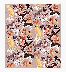 Dog Breed Pattern Illustration Photographic Print