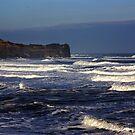 North Sea at Sandsend. by Trevor Kersley