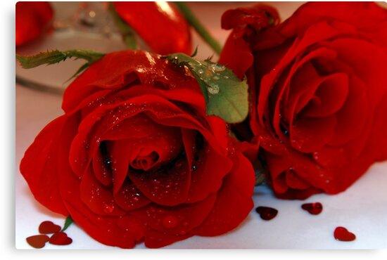 Romance by SeeOneSoul