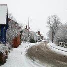 Snowy Lockington 2  by karenlynda