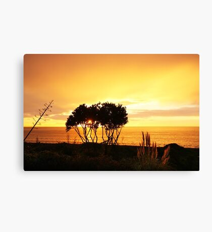 Sunrise in Bay View, NZ Canvas Print