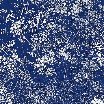 Cow Parsley Cyanotype Style by Artberry