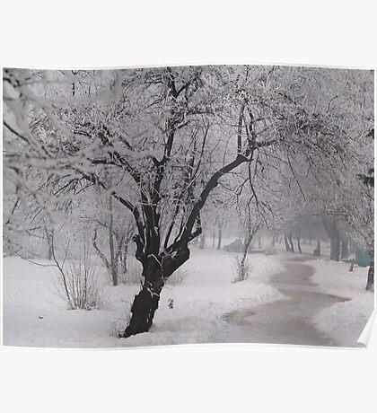 Winter Morning... Poster