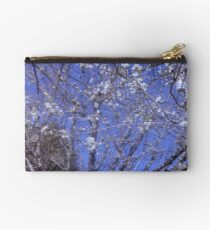 Blossoms in Febuary? Studio Pouch