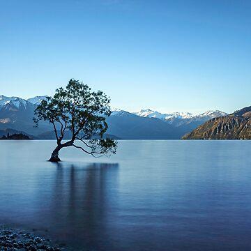 That Wanaka Tree by TamasinLangton