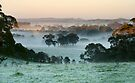 Frost & Fog - Nairne by LeeoPhotography