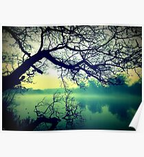 Serenity Within Nature  Poster