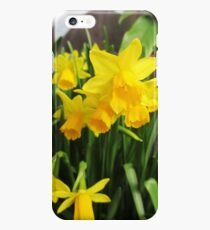 Daffodils iPhone 6s Plus Case