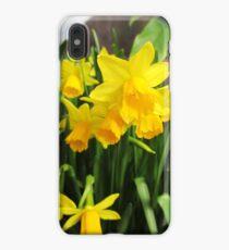 Daffodils iPhone XS Max Case