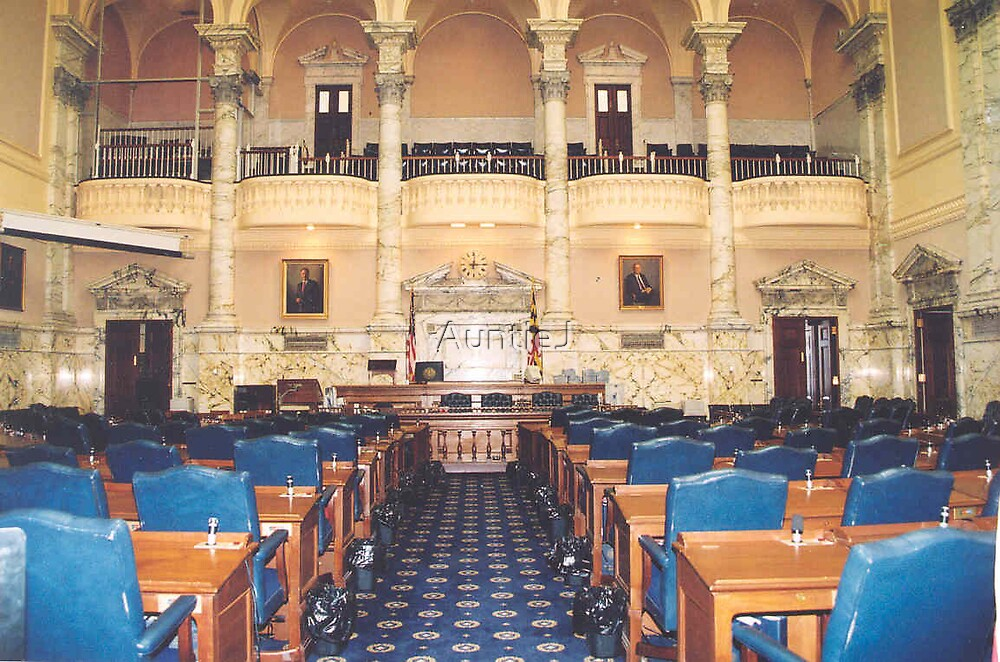 House of Delegates by AuntieJ