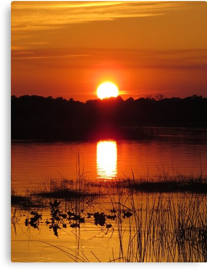 Sunset in Florida by Zina Stromberg
