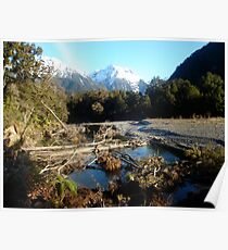 Hollyford in Winter Poster
