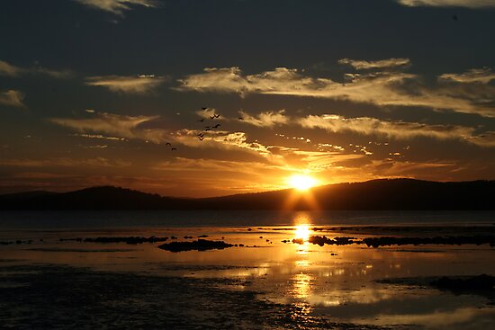 As The Sun Falls Down On Us All by Richard Olsen