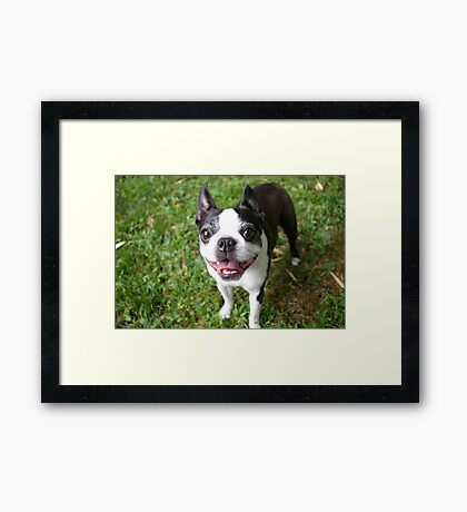 Smile Luci Framed Print