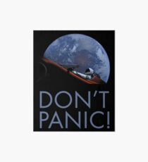 Spacex DON'T PANIC In Space Art Board