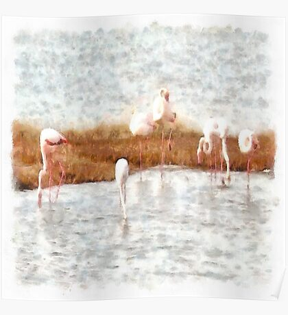 Seven Flamingos A Feeding Watercolor Poster