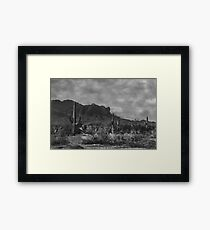 Raw Lands Framed Print