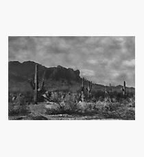 Raw Lands Photographic Print