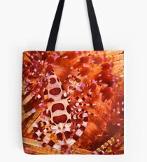 Coleman Shrimp on Fire Coral Tote Bag