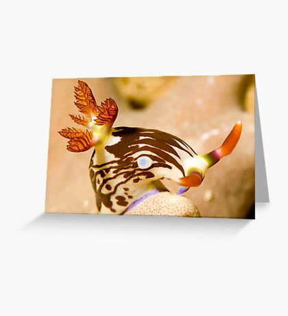 Nudi Taking a Bow Greeting Card