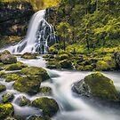 Gollinger Waterfall (Tennengau) by Dirk Wiemer
