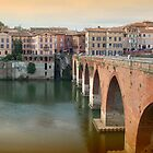 Albi - the pink city  by daffodil