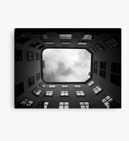 Seeking a way out Canvas Print
