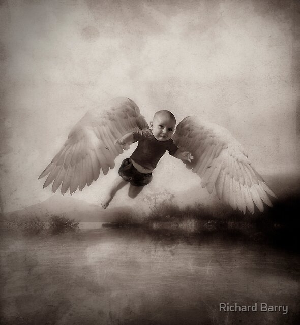 Proof of Angels by Richard Barry