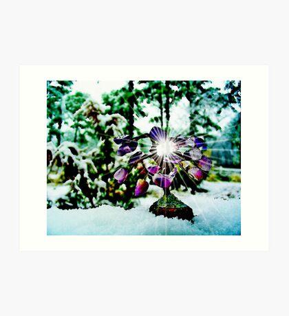 The Gem  Tree /  In Snow   Art Print