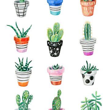 drawing cacti by anyuka