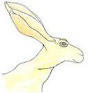 Jack Rabbit by dthaase