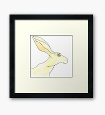 Jack Rabbit Framed Print
