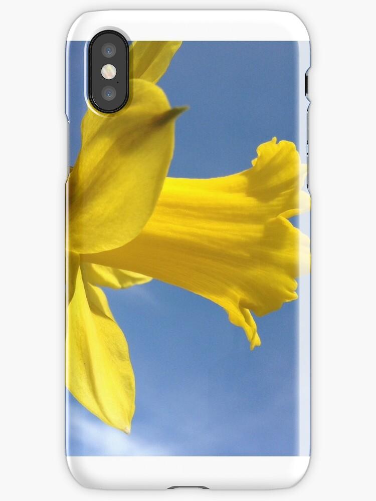 Daffodil  by ElephantGoat