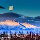 Kissing The Moon by Gregory J Summers