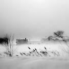 The Storm ! by Elfriede Fulda