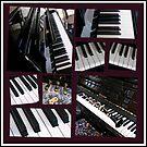 Schwarze Schönheit - Klavier und Clarinet Collage von BlueMoonRose