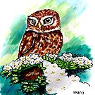 Owl on Cherry Blossoms by Katherine May