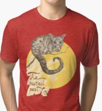 Common Brushtail Possum – The Cutest Pest Tri-blend T-Shirt